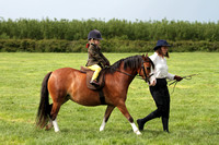 CLASS 134  Novice Rider in first year of Showing