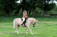 Championship-Working Hunter Pony