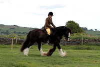 Class 140– Small Ridden not exceeding 148cms – mares, stallions & geldings aged 4 years and over