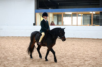12. Walk Trot Ridden any age, any combination, for Novice or nervous
