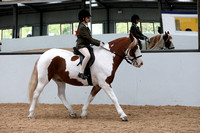 14. Best Ridden Rescue Horse or Pony